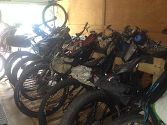 TNGA Bike Transport