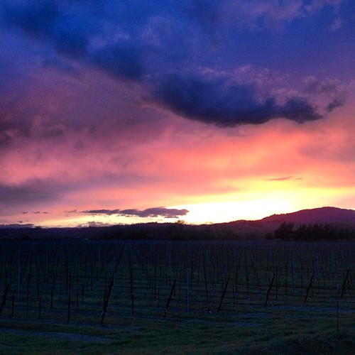Sunset vista over our Russian River Valley vineyards. #wine #travel | by jordanwinery.com