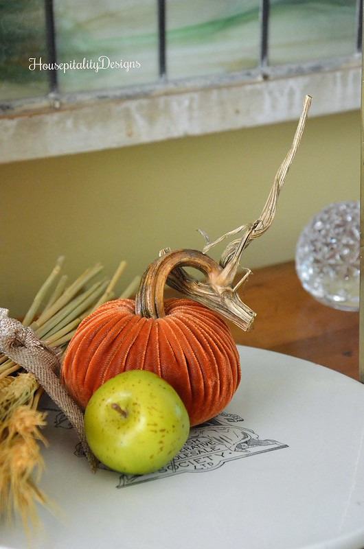 Velvet Pumpkin - Housepitality Designs