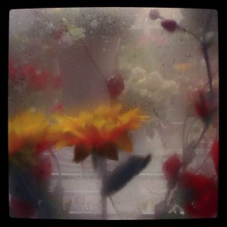 Flower shop during night rainfall, for #365days project, 231/365