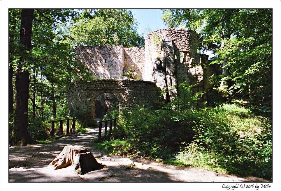 DPC #254 'Zamek Bolczów'