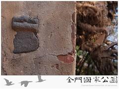 水頭鑲壁石獅-01