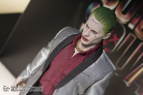 BATMAN100_HotToys_2-234