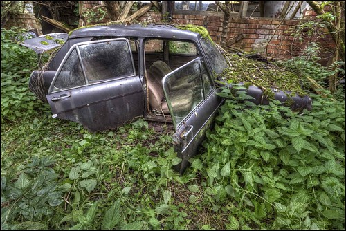 Plant Eats Car! | by Martyn.Smith.