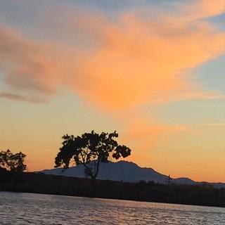 #sunset #mountdiablo #oaktree