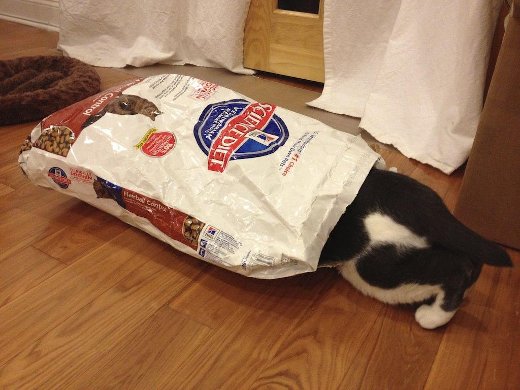 Cat Food Self-Service