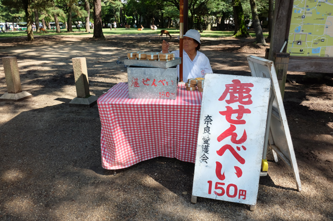 deer food at nara park