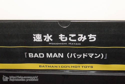 BATMAN100_HotToys_2-644