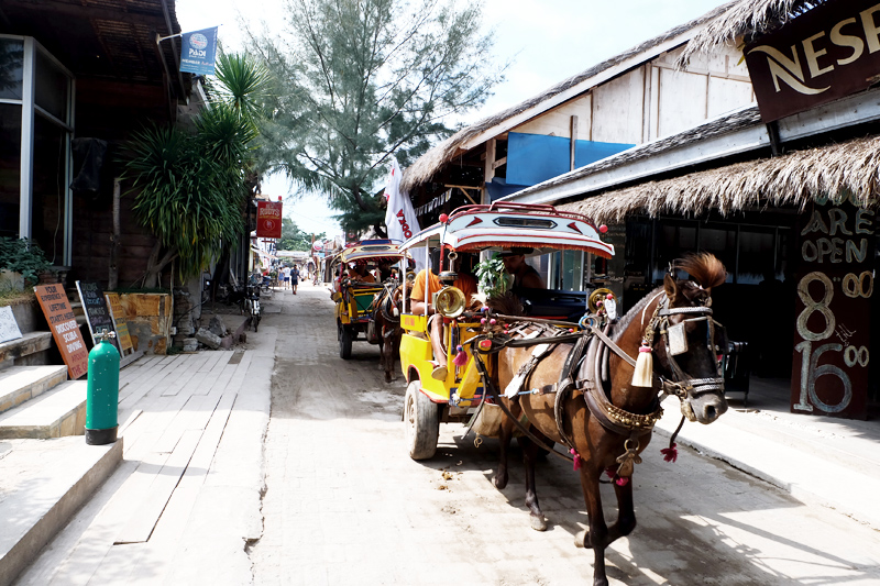 CIDOMOS HORSE CARRIAGE AT GILI