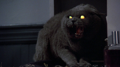 Pet Sematary - screenshot 17