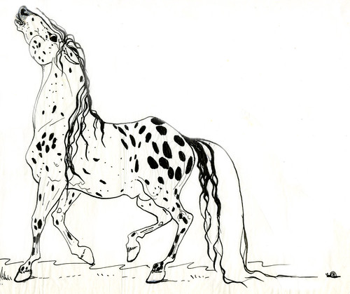Horse-pen drawing by Juanita Casey