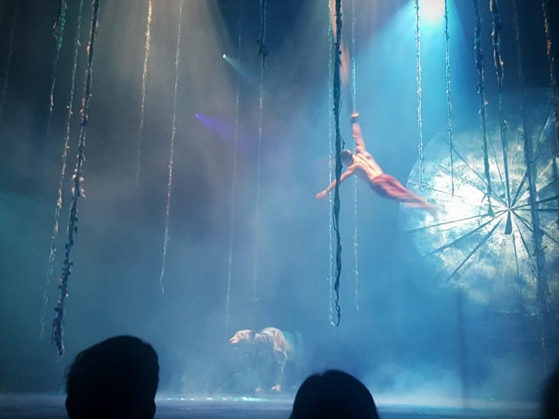 Cirque du Soleil Aerial Straps