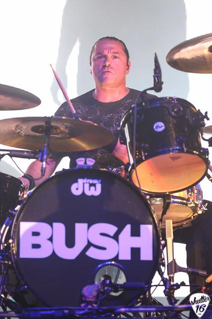 Bush-4095
