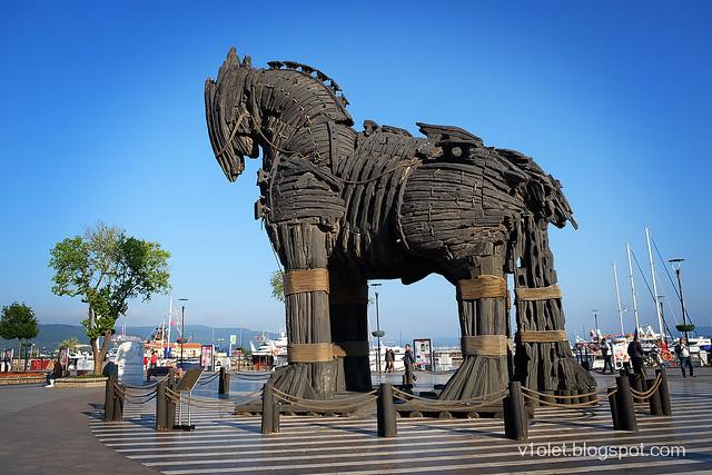 DSCF0499 Trojan Horse1rw