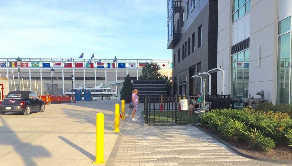 Dog Park Seaport Boston