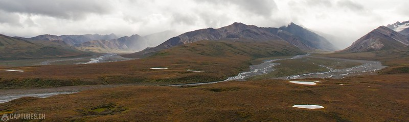 Panorama from the Polychrome Pass - Denali National Park
