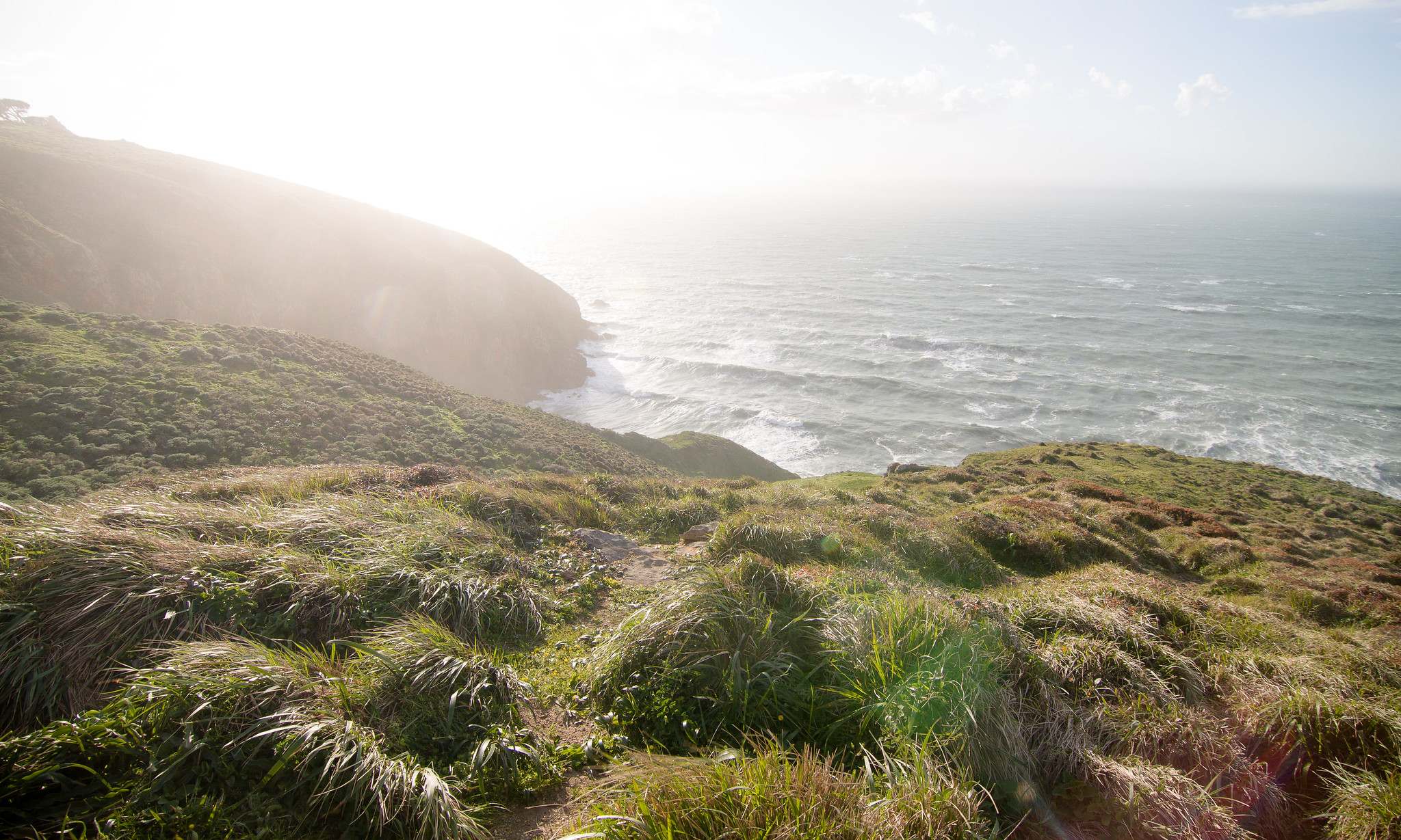 Cliffs at Point Reyes