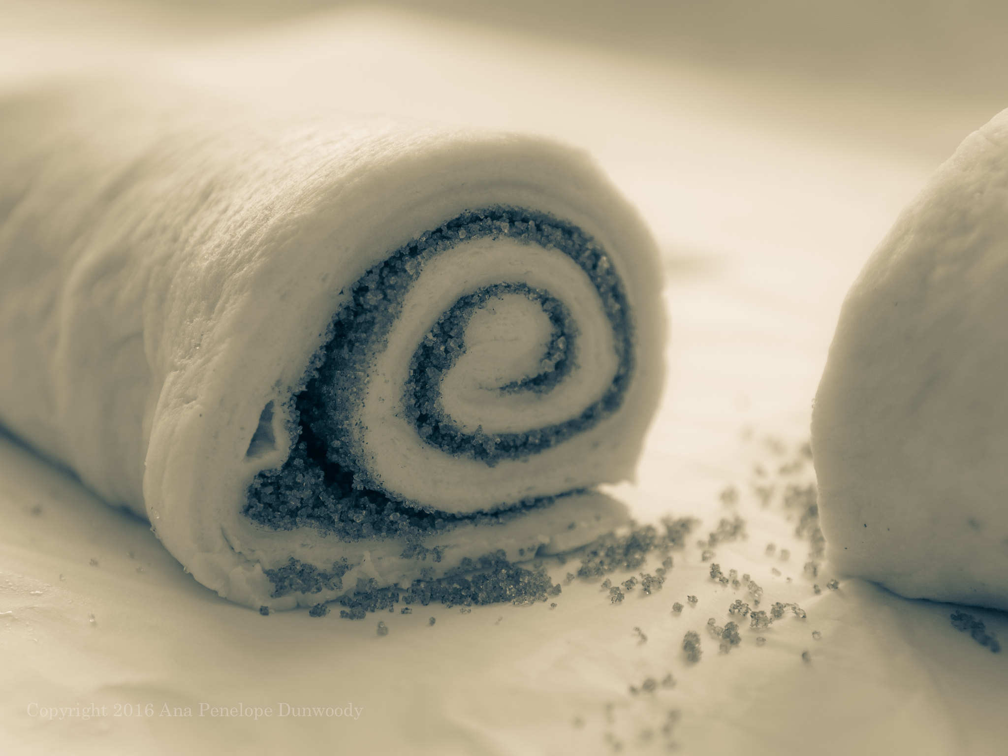 Making Cinnamon Rolls - Cut the Rolled Dough