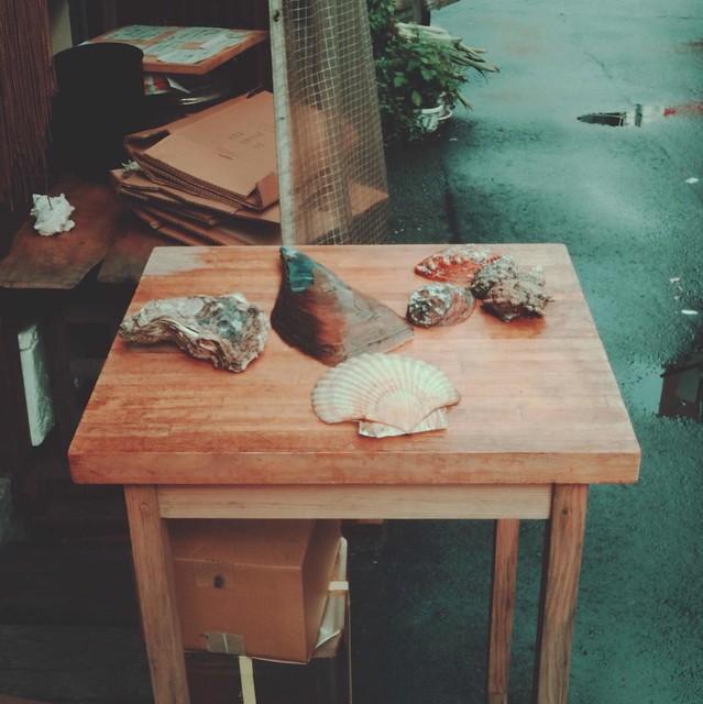 Seashells on wooden table