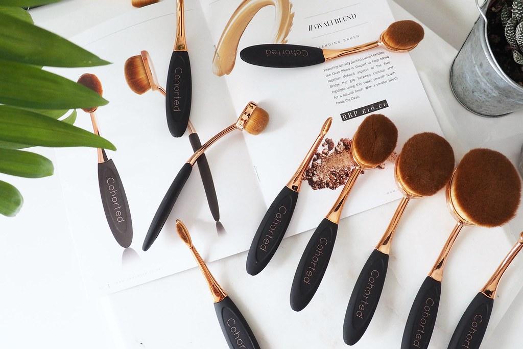 Cohorted oval brushes 3