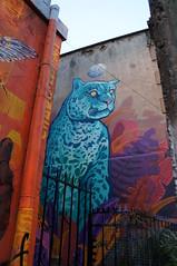 Blue panther Valparaiso