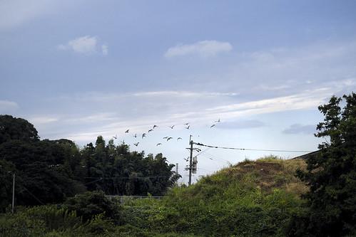 JG J0 09 005 福岡県糟屋郡新宮町 / Fuji X-Pro2 × Fujinon XF 56mm F1.2 R APD