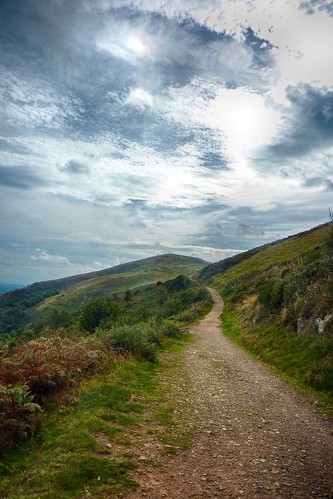 Path on North Hill - Malverns