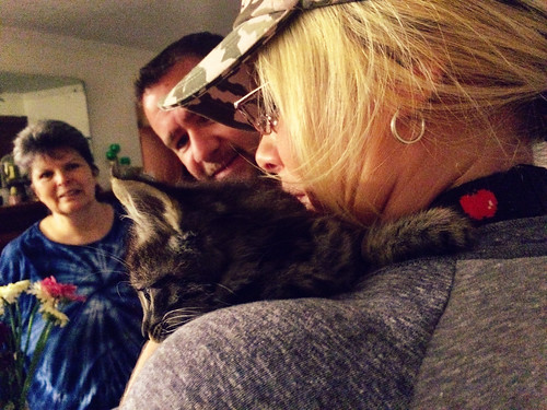 Found Kitten (September 7 2015) (2)