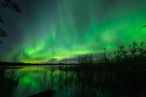 Aurora050916 (5 of 17)