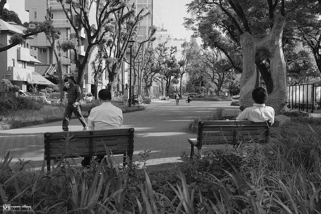 初夏,東京遊拍 | 02