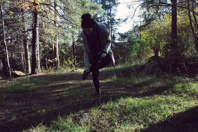 autumn 038