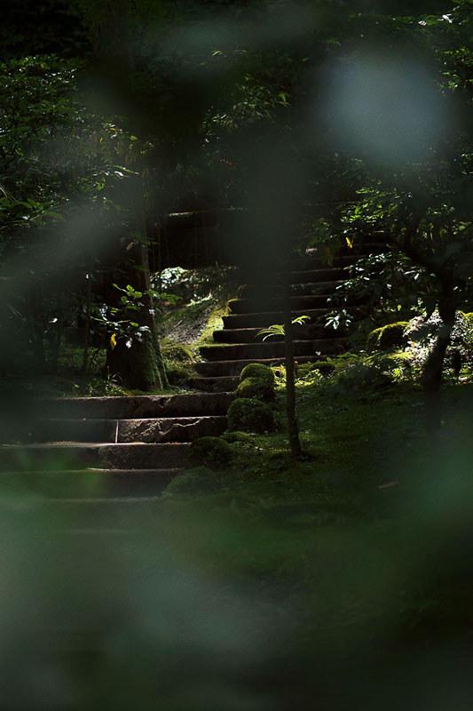 北鎌倉あじさい散歩 東慶寺