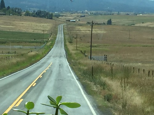 Curvy Roads-22