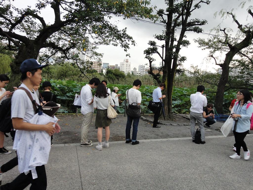 Folksamling som spelar Pokémon Go Tokyo Japan