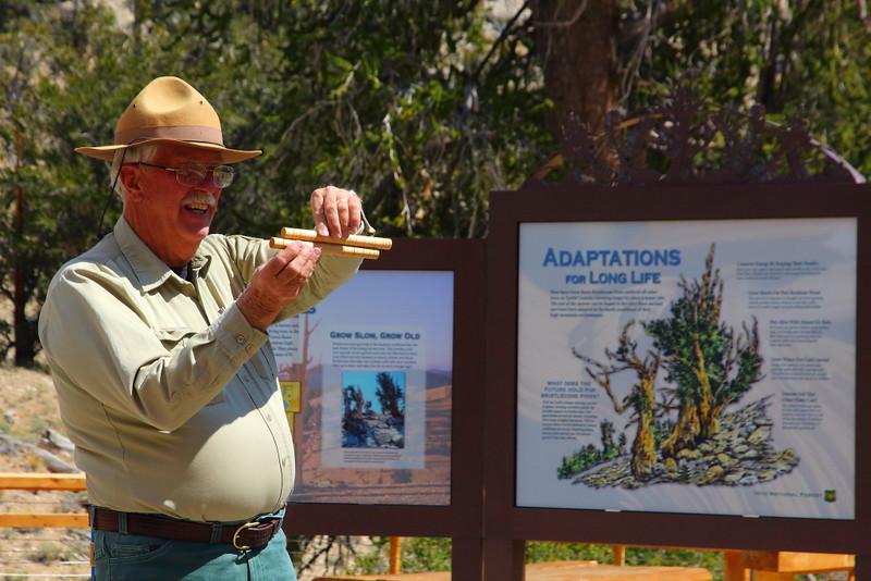 IMG_6858 Ranger Talk, Ancient Bristlecone Pine Forest