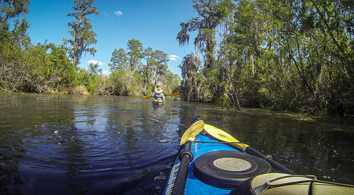 Lowcountry Unfiltered at Okefenokee-118