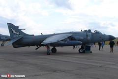 ZH800 719 VL - NB06 - Royal Navy - British Aerospace Sea Harrier FA2 - 041010 - Duxford - Steven Gray - DSCF3177