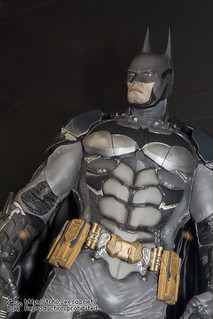BATMAN100_HotToys_2-377
