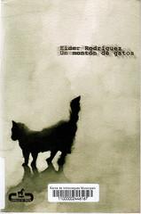 Eider Rodríguez, Un montón de gatos
