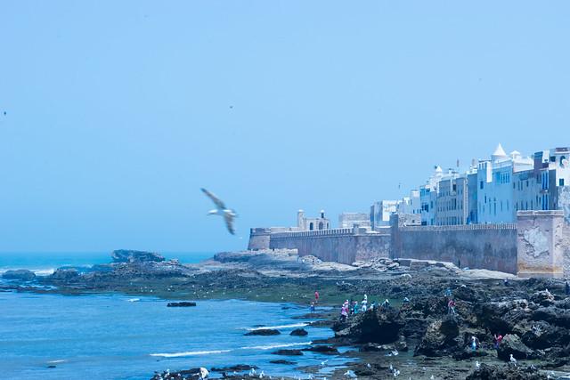 Essaouira, Morocco, Aug 2016 -00034