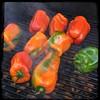 #RoastedPeppers #Peppers #KamadoJoe #BBQ #Homemade #CucinaDelloZio - beechwood smoke