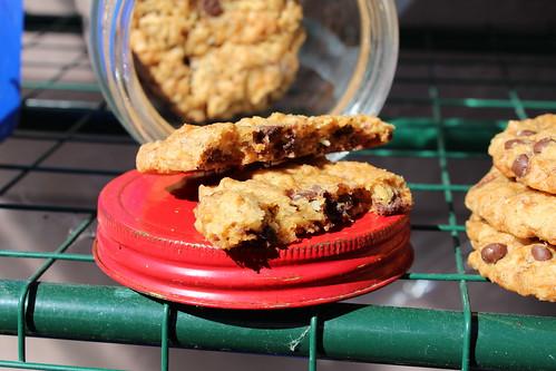 Bushwalker Cookies (Dairy-free)