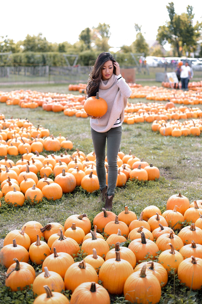 tougas farm pumpkin picking boston fashion blog