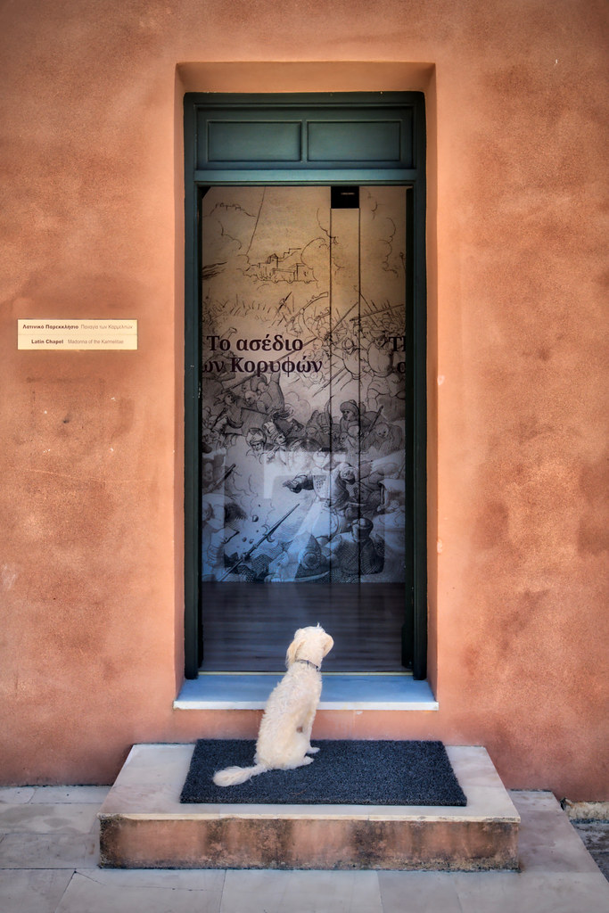Dog Wants In at the Latin Chapel