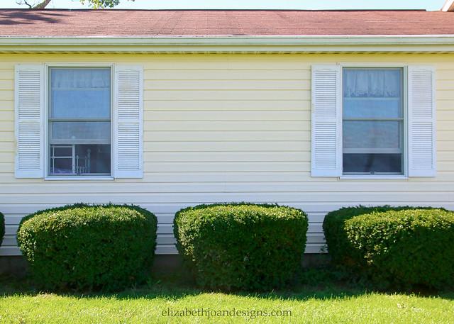 White Shutter Yellow House