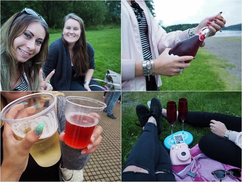 piknik viinijuhlat fresita