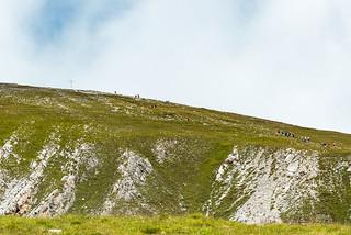 Wanderer am Piz Lad, 2808 m