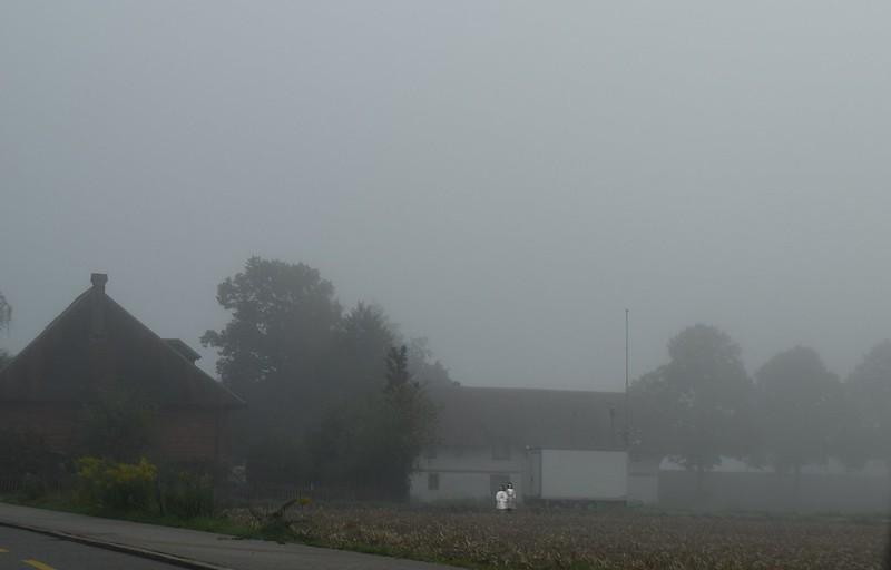 Feldbrunnen to Langendorf 28.09 (29)
