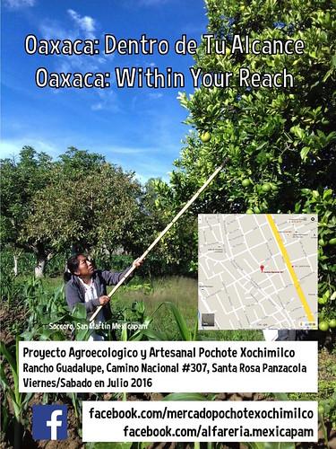Oaxaca: Dentro de Tu Alcance = Oaxaca: Within Your Reach #Pochimilco