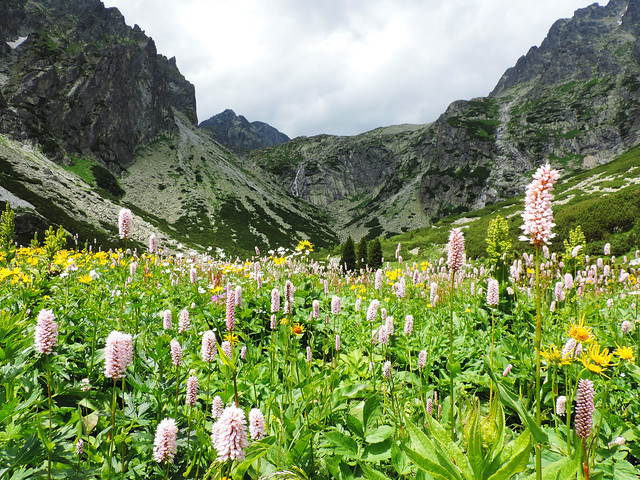 Day Hikes In The High Tatras: Small Cold Valley